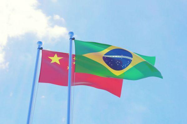 Câmara de Comércio Brasil China: 5 Prós E Contras